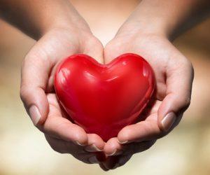Heart Tonic - Výsledok - feeedback - forum