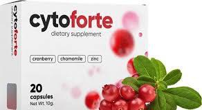 CytoForte - mienky - ako to funguje - užitočný - Feedback - Kúpiť - v lekárni