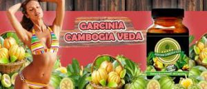Garcinia cambogia veda - výsledok - feeedback - Amazon