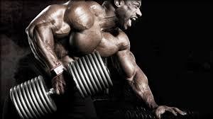Amarok - pre svalovú hmotu - kúpiť - ako to funguje - feeedback