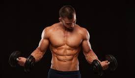 Amarok - pre svalovú hmotu - recenzia - užitočný - cena