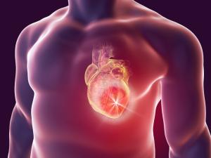 Cardiol - kúpiť - účinky - test