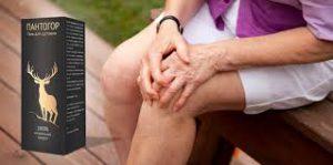 Pantogor - na kĺby - výsledok - gél - v lekárni