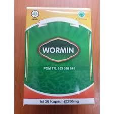 Wormin - pre parazity - forum - cena - test