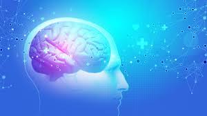 Neurocyclin – tablety – ako to funguje – Amazon